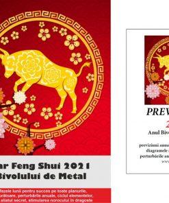 Set Calendar + brosura Previziuni 2021 in limba romana