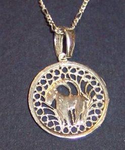 Pandantiv din argint pe lant din argint- Capricorn