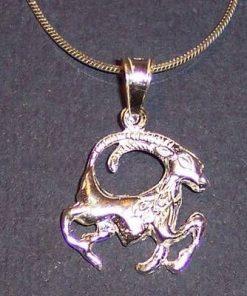 Pandantiv din argint pe lant din argint - Capricorn