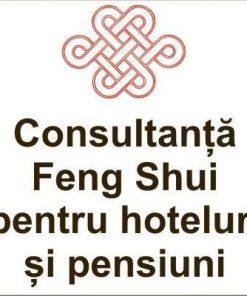 Consultanta Feng Shui pentru hoteluri si pensiuni in Brasov