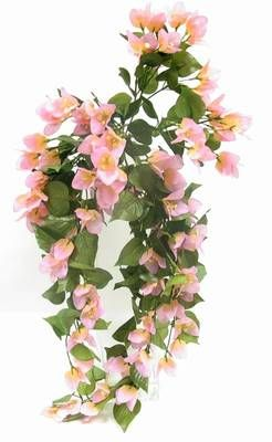 Floare decorativa curgatoare pentru stimularea chi-ului,