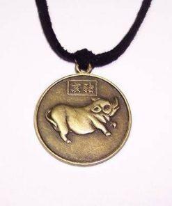 Talisman de protectie pentru zodia Porc